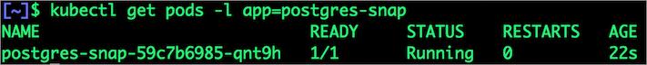 $ kubectl get pods -l app=postgres-snap