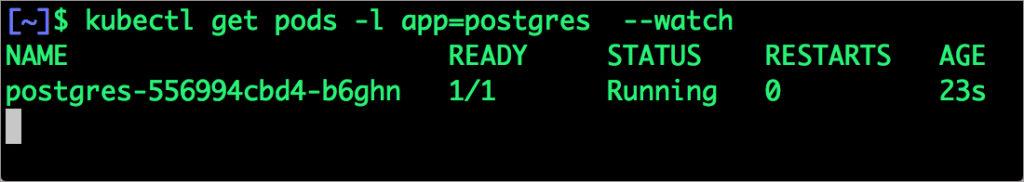 $ kubectl get pods -l app=postgres --watch