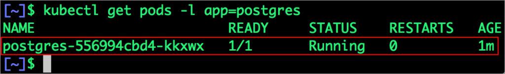 $ kubectl get pods -l app=postgres