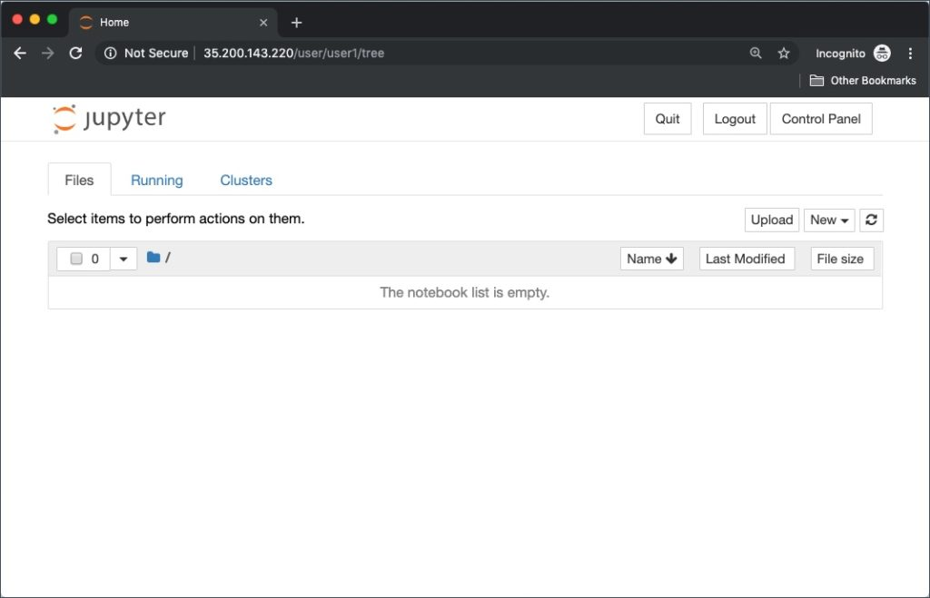 We will now log in JupyterHub as a different user, user1, to create a new profile.